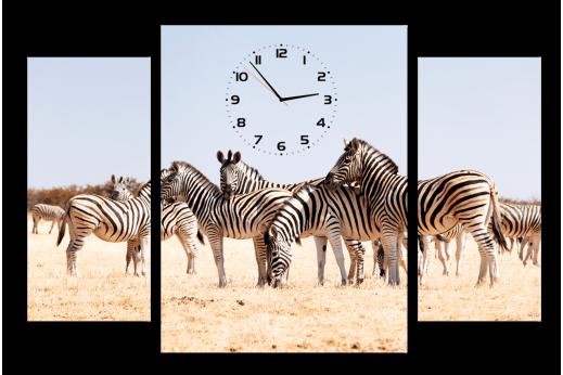 Модульная картина с часами Зебры